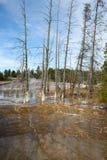 Abaissez le bassin de geyser Photo libre de droits