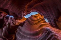 Abaissez le canyon d'antilope lokking  Images stock