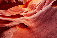 Abaissez le canyon d'antilope près de la page, Arizona, Etats-Unis Photo libre de droits