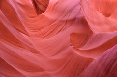 Abaissez le canyon n d'antilope l'après-midi Photo stock