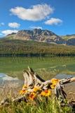 Abaissez le lac deux medicine Images libres de droits