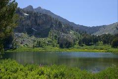 Abaissez le lac dollar Images libres de droits