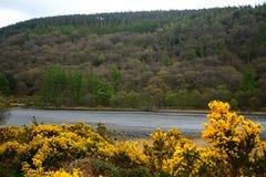 Abaissez le lac, Glendalough, Irlande Images libres de droits