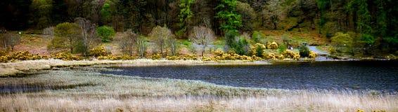 Abaissez le lac, Glendalough, Irlande Photographie stock libre de droits