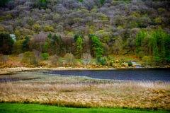 Abaissez le lac, Glendalough, Irlande Images stock