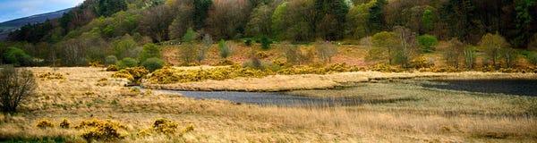 Abaissez le lac, Glendalough, Irlande Image stock
