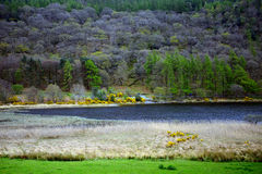 Abaissez le lac, Glendalough, Irlande Photo stock