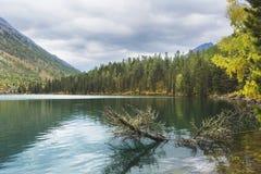 Abaissez le lac Multinskoe Montagnes d'Altai Autumn Landscape Photographie stock