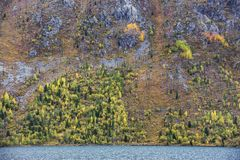 Abaissez le lac Multinskoe, montagnes d'Altai Russie Autumn Landscape Photo libre de droits