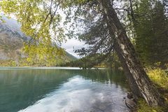 Abaissez le lac Multinskoe Paysage de montagnes d'Altai Photographie stock