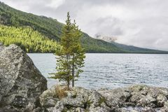 Abaissez le lac Multinskoe Vue de Shumi Automne l de montagnes d'Altai Photographie stock