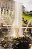 Abaissez le parc dans Peterhof Photographie stock