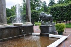 Abaissez le parc de la cascade du ` s de ` de fontaine du ` s de lion de Peterhof ou de lion de ` Photo stock