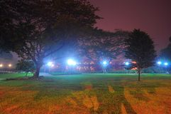 Abaissez le parc de réservoir de Seletar dans une nuit floue Photo libre de droits