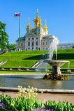 Abaissez le parc et l'église des saints Peter et Paul dans Petergof Photographie stock