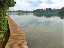 Abaissez le réservoir de Peirce, Singapour Images libres de droits