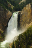 Abaissez le stationnement national de Yellowstone d'automnes Photo stock