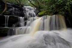 Abaissez les automnes 5 de Somersby Image libre de droits