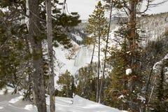Abaissez les automnes chez Grand Canyon de parc national de Yellowstone dans le wint Photographie stock libre de droits