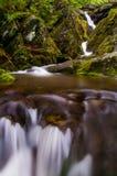 Abaissez les automnes creux foncés, dans lui est ivrogne, l'environnement rocheux dans Shena Photos libres de droits