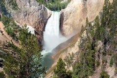 Abaissez les automnes dans Grand Canyon du Yellowstone, Wyoming Image libre de droits