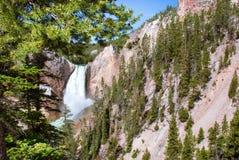 Abaissez les automnes dans le Yellowstone Grand Canyon Photographie stock libre de droits