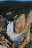 Abaissez les automnes du Yellowstone Photographie stock libre de droits