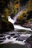 Abaissez les automnes et le canyon au parc d'état de Letchworth - la cascade et tombent/Autumn Colors - New York Photographie stock libre de droits