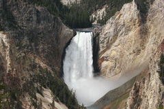 Abaissez les automnes la rivière Yellowstone Image libre de droits