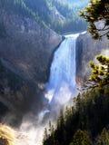 Abaissez les automnes la rivière Yellowstone, Wyoming, Etats-Unis Photo libre de droits