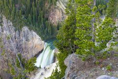 Abaissez les automnes, parc national de Yellowstone Photos stock