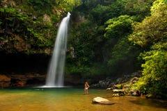 Abaissez les cascades de Tavoro en parc du patrimoine national de Bouma, Taveuni Photo stock