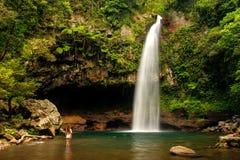 Abaissez les cascades de Tavoro en parc du patrimoine national de Bouma, Taveuni Photographie stock libre de droits