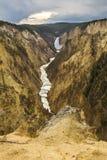 Abaissez les chutes de la rivière Yellowstone, Wyoming Photo libre de droits