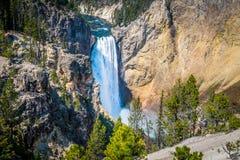 Abaissez les chutes du canyon de Yellowstone Images libres de droits
