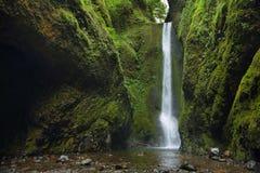 Abaissez les chutes en gorge d'Oneonta Gorge du fleuve Columbia Photo libre de droits