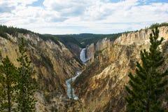 Abaissez les chutes sur la rivière Yellowstone Photographie stock libre de droits