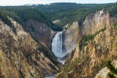 Abaissez les chutes sur la rivière Yellowstone Photos libres de droits