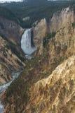 Abaissez les chutes sur la rivière Yellowstone Image libre de droits