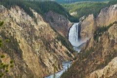 Abaissez les chutes sur la rivière Yellowstone Photographie stock