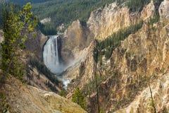 Abaissez les chutes sur la rivière Yellowstone Images libres de droits