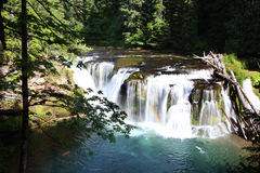 Abaissez Lewis River Falls Image stock