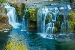 Abaissez Lewis River Falls - la région boisée, WA Photographie stock