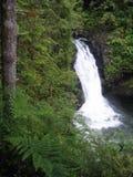 Abaissez Wallace Falls image libre de droits