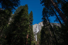 Abaissez Yosemite Falls Photo stock