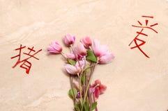 Abaixa e símbolos chineses foto de stock