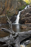 Abaixe a cachoeira de McKenzie Imagens de Stock Royalty Free