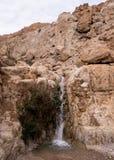 Abaixe a cachoeira na mola do ` s de David fotos de stock
