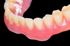 Abaixe a dentadura Imagens de Stock Royalty Free