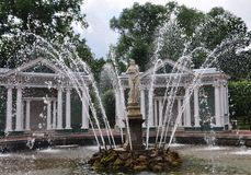 Abaixe a fonte da véspera do parque de Peterhof Imagens de Stock